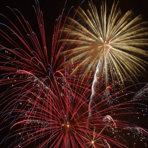 Keep Wildlife Safe This 4th of July ad featuring red and gold fireworks